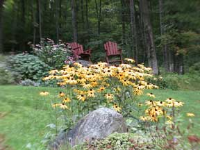 Come sit in the gardens at the Birch Ridge Inn.